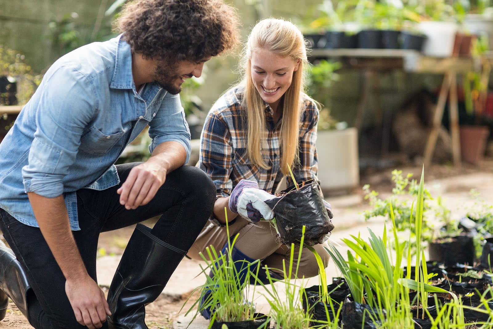Supervising new hire garden work