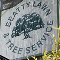 Beatty Lawn & Tree Service